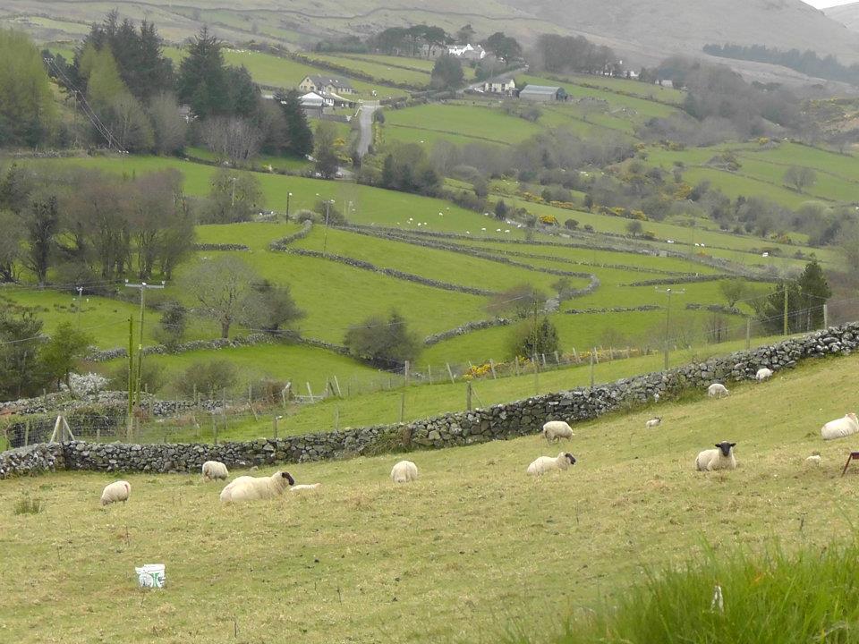 irlande-du-nord2