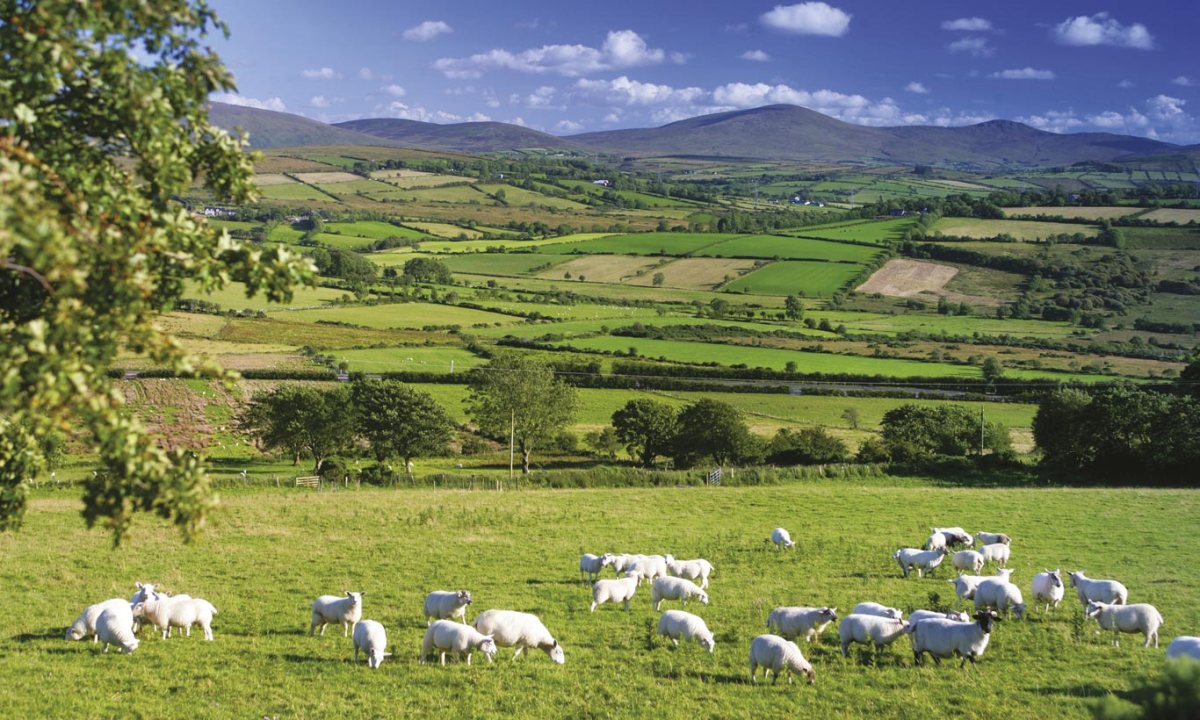 L'Irlande du Nord