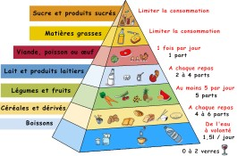 pyramide alimentaire.jpg